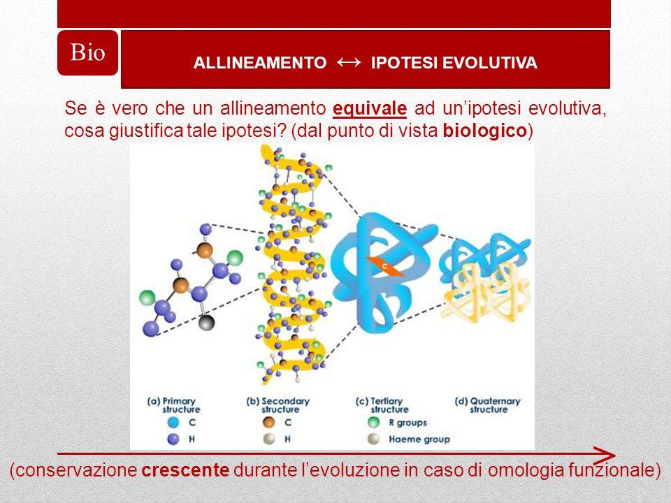 ALLINEAMENTO IPOTESI EVOLUTIVA Bio Se è vero che un allineamento equivale ad unipotesi evolutiva, cosa giustifica tale ipotesi? (dal punto di vista bi