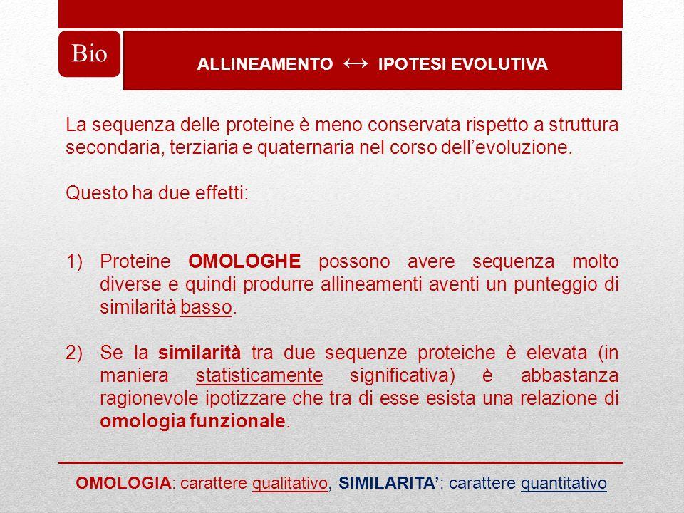 ALLINEAMENTO IPOTESI EVOLUTIVA Bio La sequenza delle proteine è meno conservata rispetto a struttura secondaria, terziaria e quaternaria nel corso del
