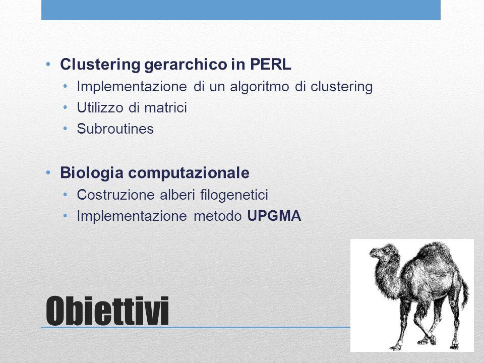 Obiettivi Clustering gerarchico in PERL Implementazione di un algoritmo di clustering Utilizzo di matrici Subroutines Biologia computazionale Costruzione alberi filogenetici Implementazione metodo UPGMA