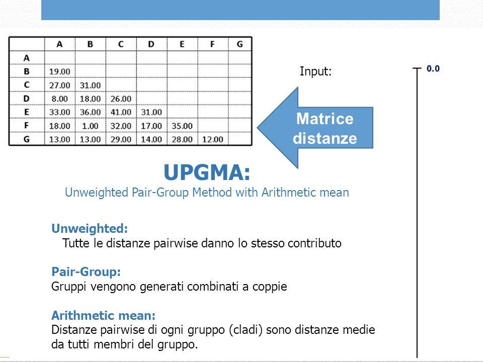 Unweighted: Tutte le distanze pairwise danno lo stesso contributo Pair-Group: Gruppi vengono generati combinati a coppie Arithmetic mean: Distanze pairwise di ogni gruppo (cladi) sono distanze medie da tutti membri del gruppo.