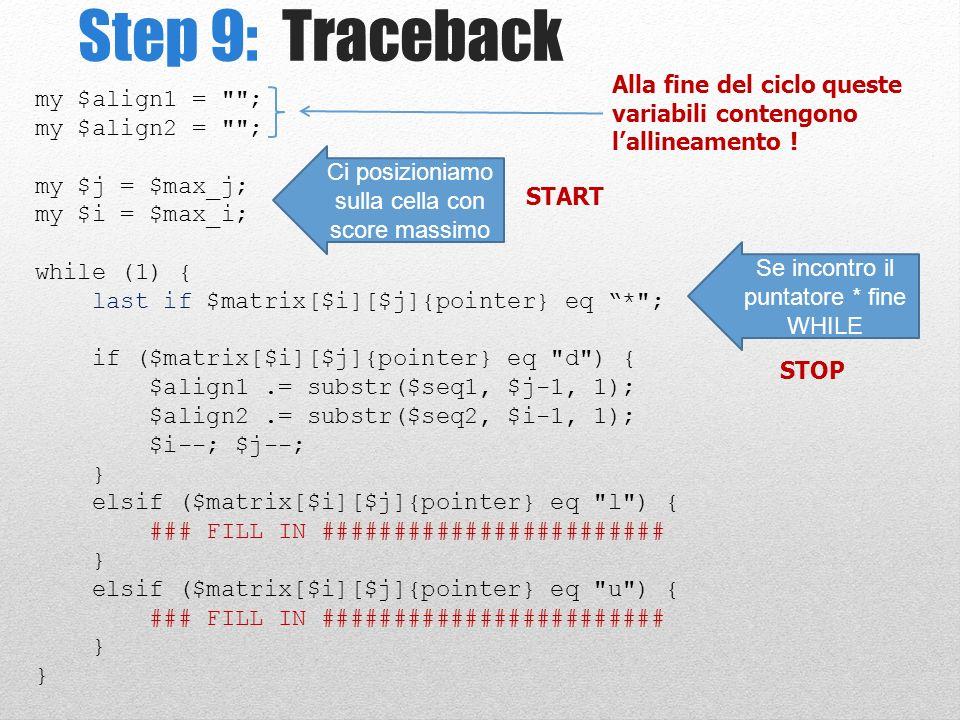 Step 9: Traceback my $align1 =