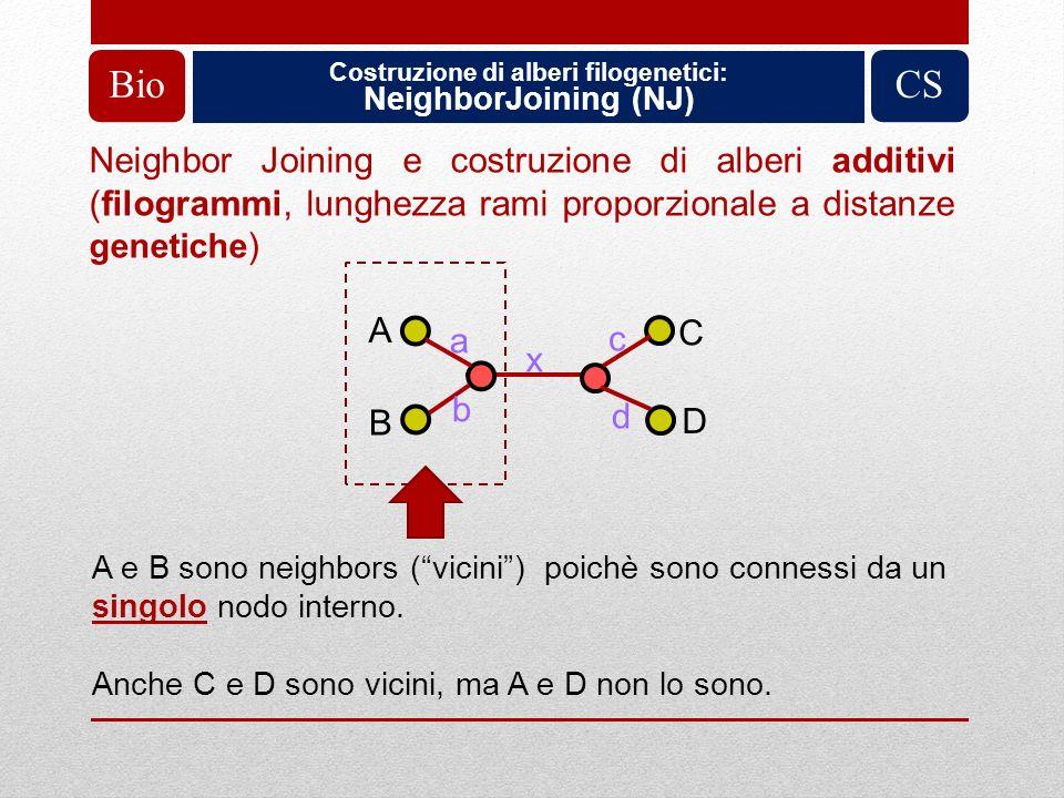 Costruzione di alberi filogenetici: NeighborJoining (NJ) BioCS A B C D a b x c d A e B sono neighbors (vicini) poichè sono connessi da un singolo nodo