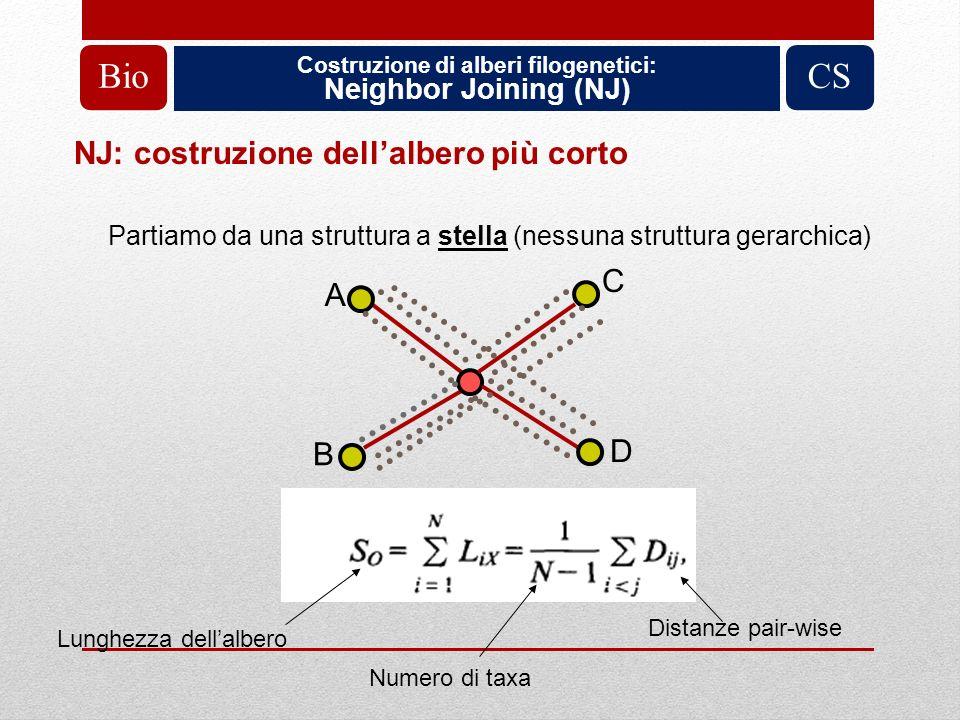 Costruzione di alberi filogenetici: Neighbor Joining (NJ) BioCS A B C D Partiamo da una struttura a stella (nessuna struttura gerarchica) Lunghezza de