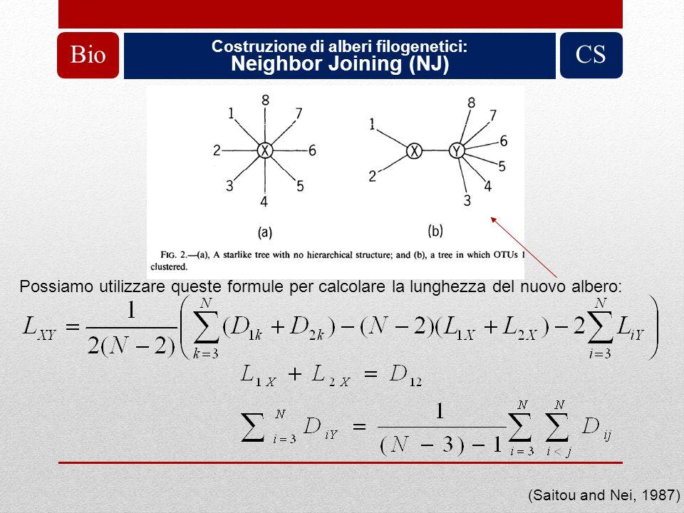 Costruzione di alberi filogenetici: Neighbor Joining (NJ) BioCS (Saitou and Nei, 1987) Possiamo utilizzare queste formule per calcolare la lunghezza d