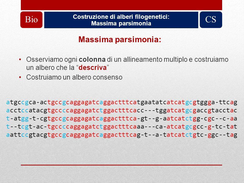 Costruzione di alberi filogenetici: Massima parsimonia BioCS Massima parsimonia: Osserviamo ogni colonna di un allineamento multiplo e costruiamo un a