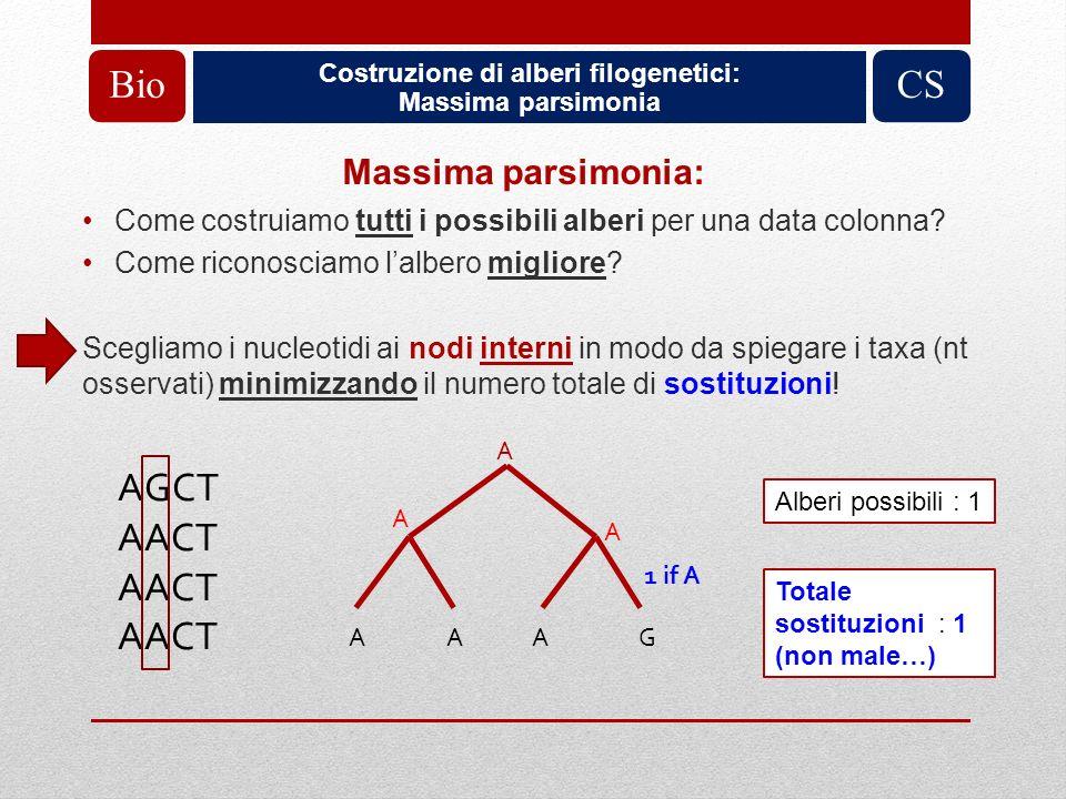 Costruzione di alberi filogenetici: Massima parsimonia BioCS Massima parsimonia: Come costruiamo tutti i possibili alberi per una data colonna? Come r