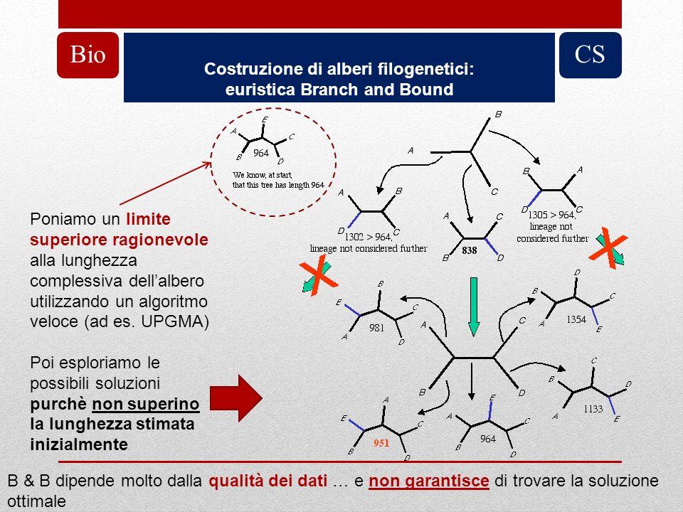 Costruzione di alberi filogenetici: euristica Branch and Bound BioCS Poniamo un limite superiore ragionevole alla lunghezza complessiva dellalbero uti