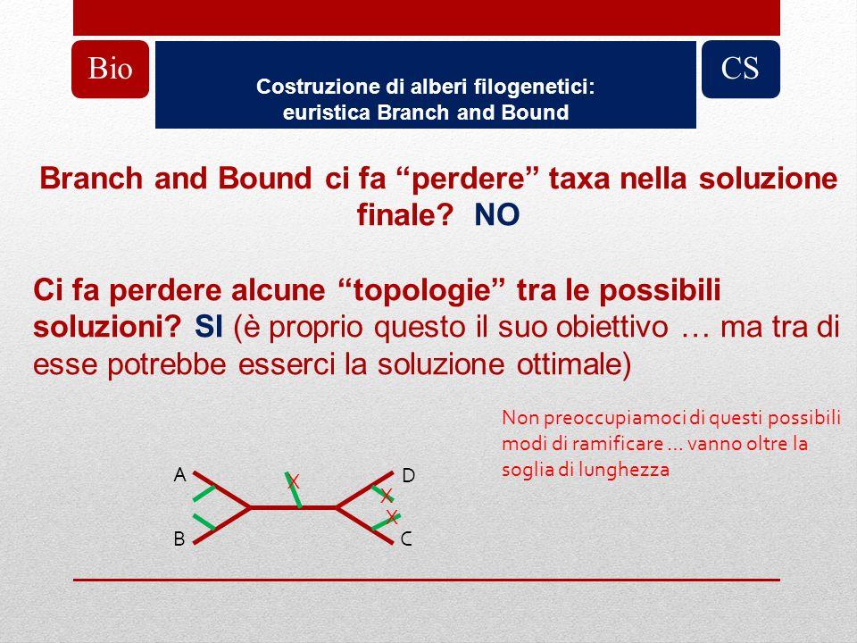 Costruzione di alberi filogenetici: euristica Branch and Bound BioCS Branch and Bound ci fa perdere taxa nella soluzione finale? NO Ci fa perdere alcu