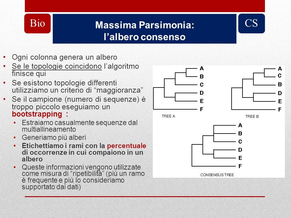 Massima Parsimonia: lalbero consenso BioCS Ogni colonna genera un albero Se le topologie coincidono lalgoritmo finisce qui Se esistono topologie diffe