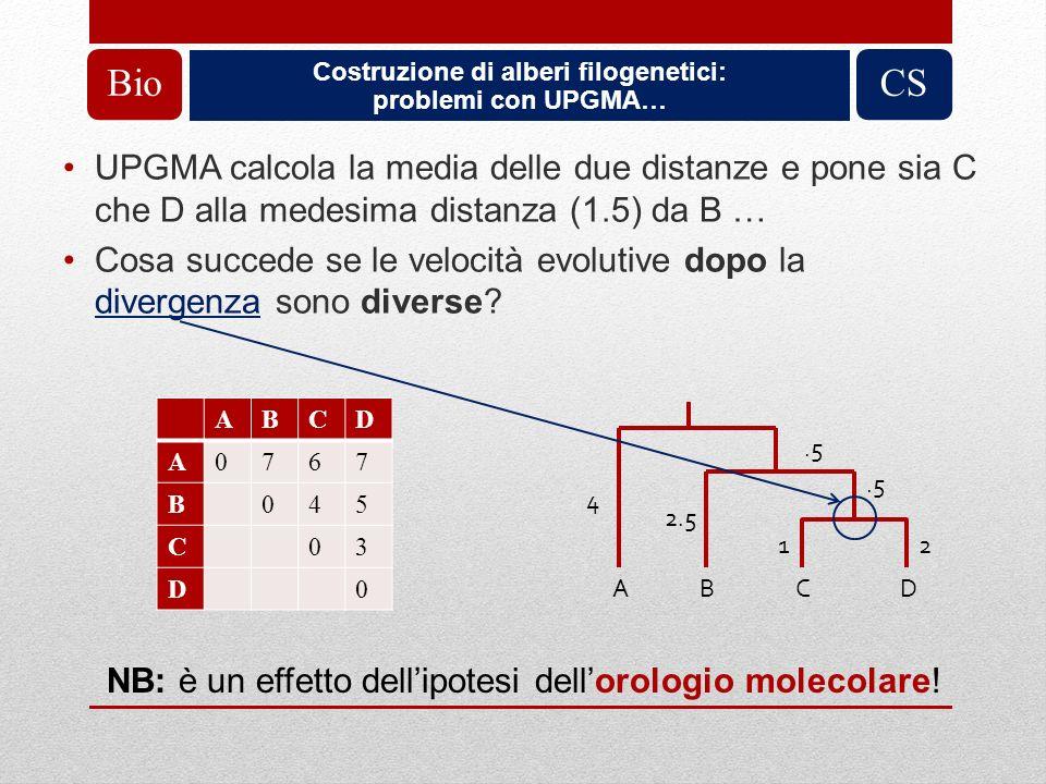 Costruzione di alberi filogenetici: problemi con UPGMA… BioCS UPGMA calcola la media delle due distanze e pone sia C che D alla medesima distanza (1.5