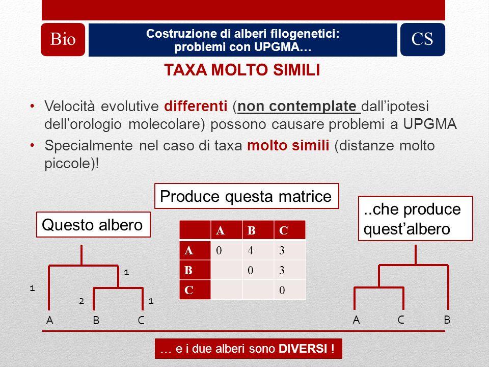 Costruzione di alberi filogenetici: problemi con UPGMA… BioCS TAXA MOLTO SIMILI Velocità evolutive differenti (non contemplate dallipotesi dellorologi