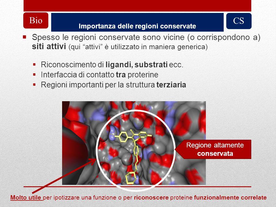 Importanza delle regioni conservate CSBio Spesso le regioni conservate sono vicine (o corrispondono a) siti attivi (qui attivi è utilizzato in maniera