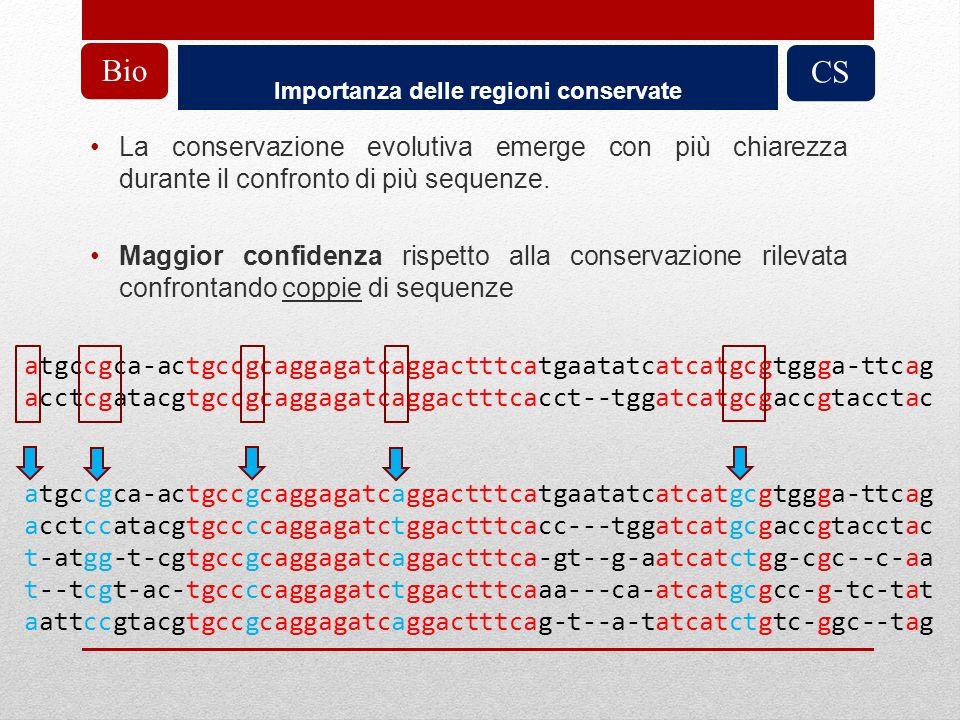 Importanza delle regioni conservate CSBio La conservazione evolutiva emerge con più chiarezza durante il confronto di più sequenze. Maggior confidenza