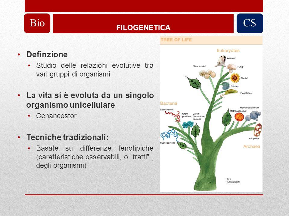 Costruzione di un cladogramma o di un filogramma Lunghezza di ogni ramo rappresenta il numero di cambiamenti osservati tra le sequenze (eccezione: in cladogramma lunghezza rami non ha significato) Vicinanza topologica rappresenta vicinanza filogenetica Costruzione di alberi filogenetici BioCS Obiettivo: Ogni sequenza è un TAXA Ogni sottoalbero è un CLADE Lunghezza albero = SOMMA(lunghezze rami)
