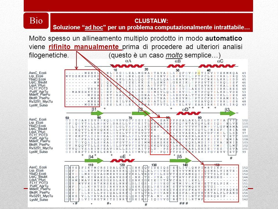 CLUSTALW: Soluzione ad hoc per un problema computazionalmente intrattabile… Bio Molto spesso un allineamento multiplo prodotto in modo automatico vien
