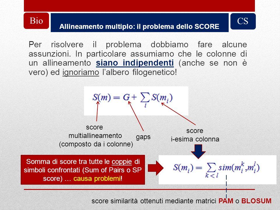 Allineamento multiplo: il problema dello SCORE CS Per risolvere il problema dobbiamo fare alcune assunzioni. In particolare assumiamo che le colonne d