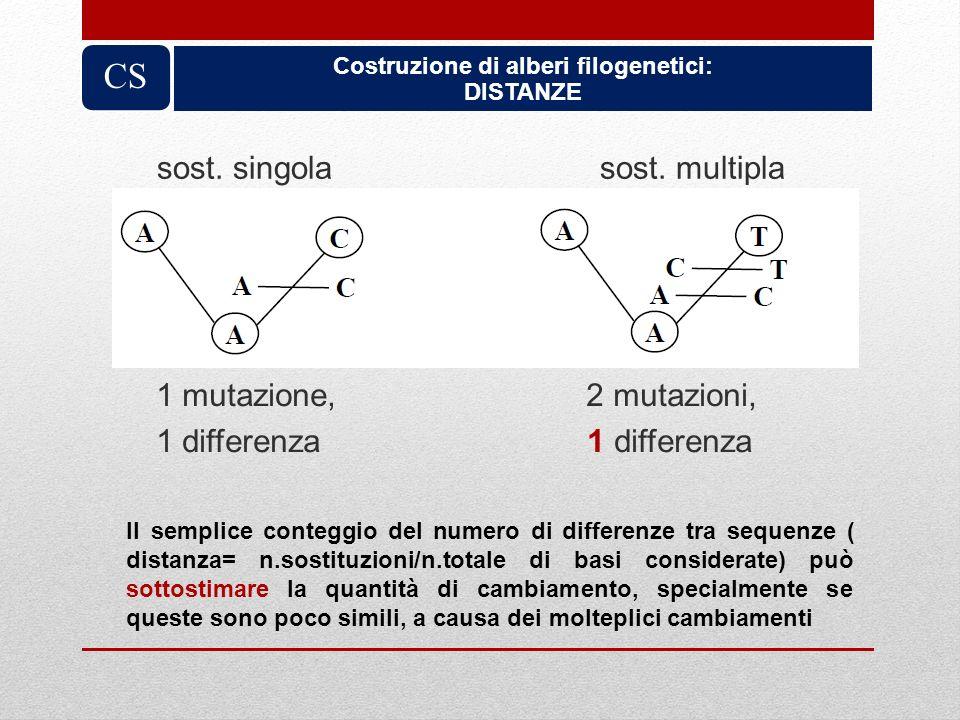 sost. singola sost. multipla Costruzione di alberi filogenetici: DISTANZE CS 1 mutazione, 2 mutazioni, 1 differenza 1 differenza Il semplice conteggio
