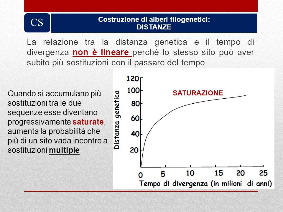 Costruzione di alberi filogenetici: DISTANZE CS La relazione tra la distanza genetica e il tempo di divergenza non è lineare perchè lo stesso sito può