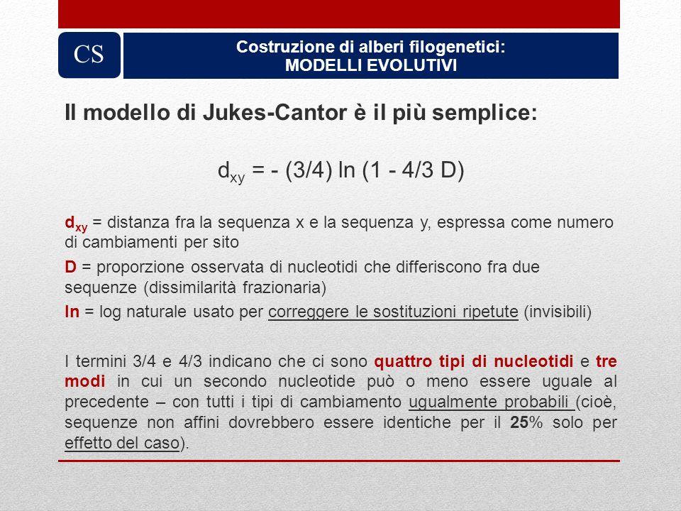 Costruzione di alberi filogenetici: MODELLI EVOLUTIVI CS Il modello di Jukes-Cantor è il più semplice: d xy = - (3/4) ln (1 - 4/3 D) d xy = distanza f