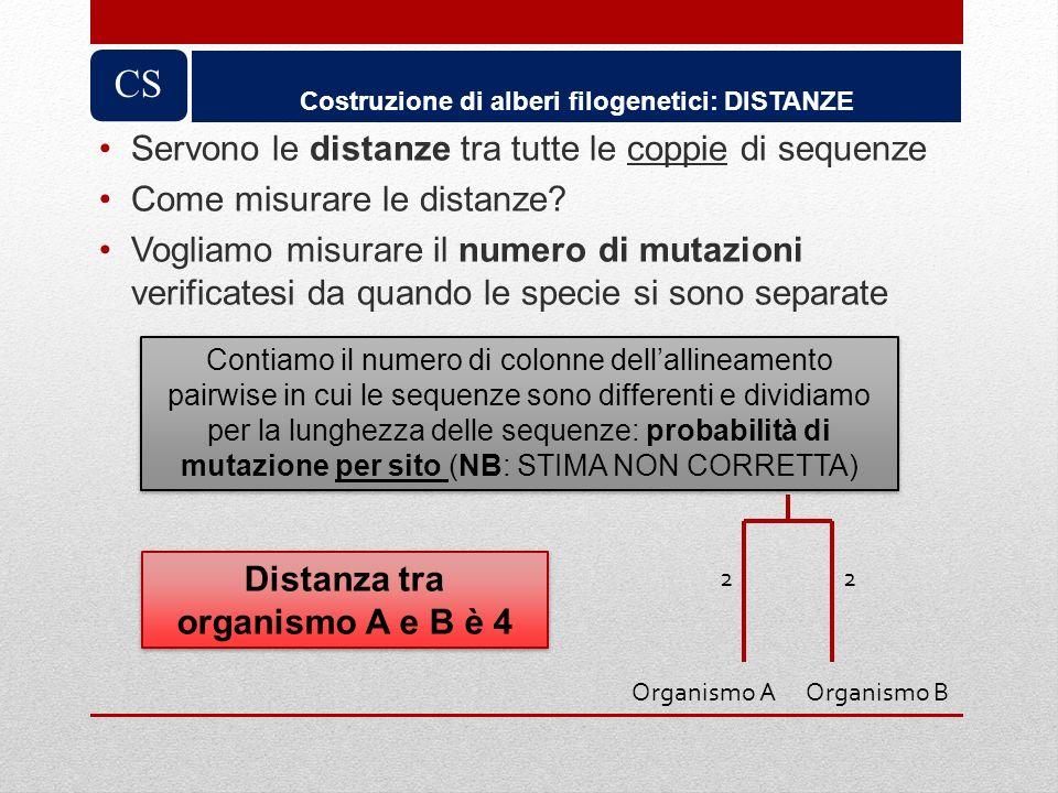 Servono le distanze tra tutte le coppie di sequenze Come misurare le distanze? Vogliamo misurare il numero di mutazioni verificatesi da quando le spec