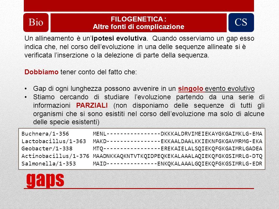 PROBLEMA: allineamento multiplo Ipotesi di soluzione: Progr.