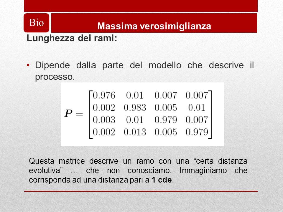 Bio Massima verosimiglianza Lunghezza dei rami: Dipende dalla parte del modello che descrive il processo.