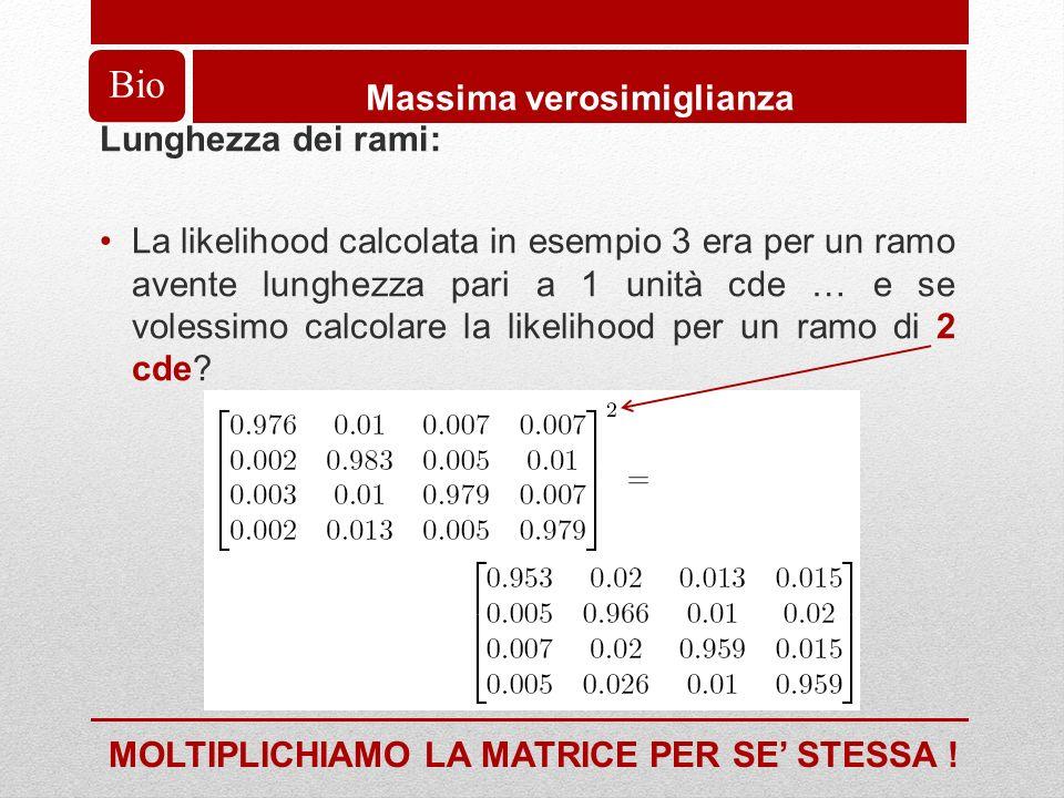 Bio Massima verosimiglianza Lunghezza dei rami: La likelihood calcolata in esempio 3 era per un ramo avente lunghezza pari a 1 unità cde … e se volessimo calcolare la likelihood per un ramo di 2 cde.