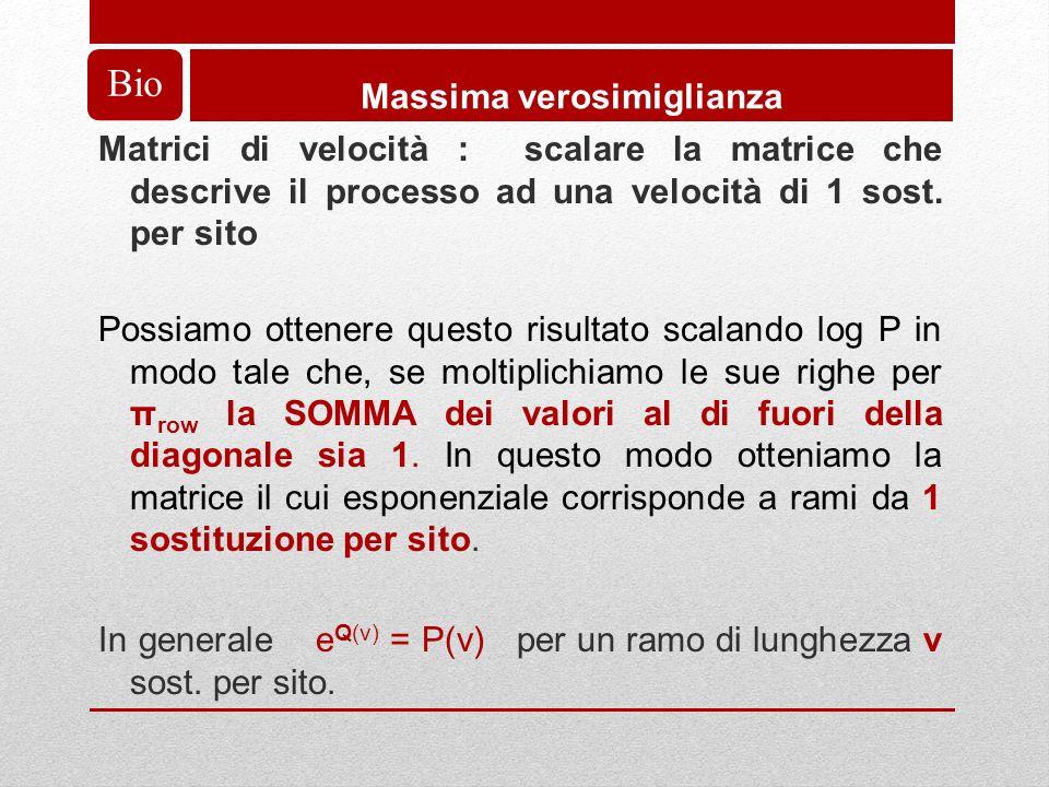 Bio Massima verosimiglianza Matrici di velocità : scalare la matrice che descrive il processo ad una velocità di 1 sost.