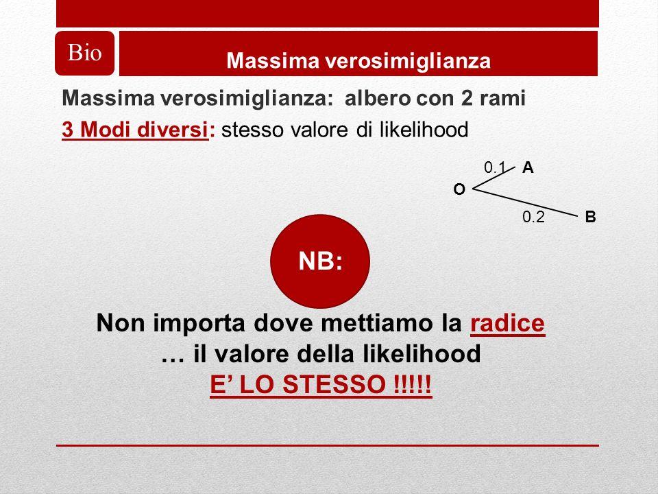 Bio Massima verosimiglianza Massima verosimiglianza: albero con 2 rami 3 Modi diversi: stesso valore di likelihood A O B 0.1 0.2 NB: Non importa dove mettiamo la radice … il valore della likelihood E LO STESSO !!!!!