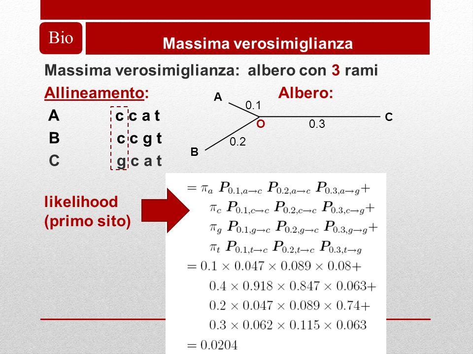 Massima verosimiglianza: albero con 3 rami Allineamento: Albero: A c c a t B c c g t C g c a t Bio Massima verosimiglianza A B 0.1 0.2 C 0.3O likelihood (primo sito)