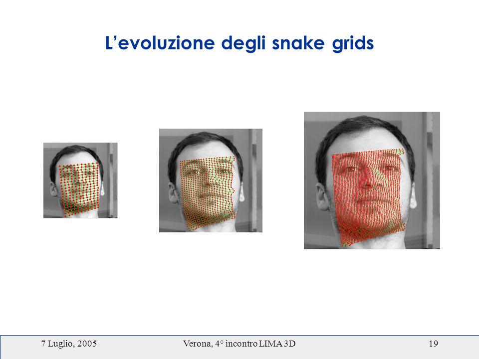 7 Luglio, 2005Verona, 4° incontro LIMA 3D19 Levoluzione degli snake grids