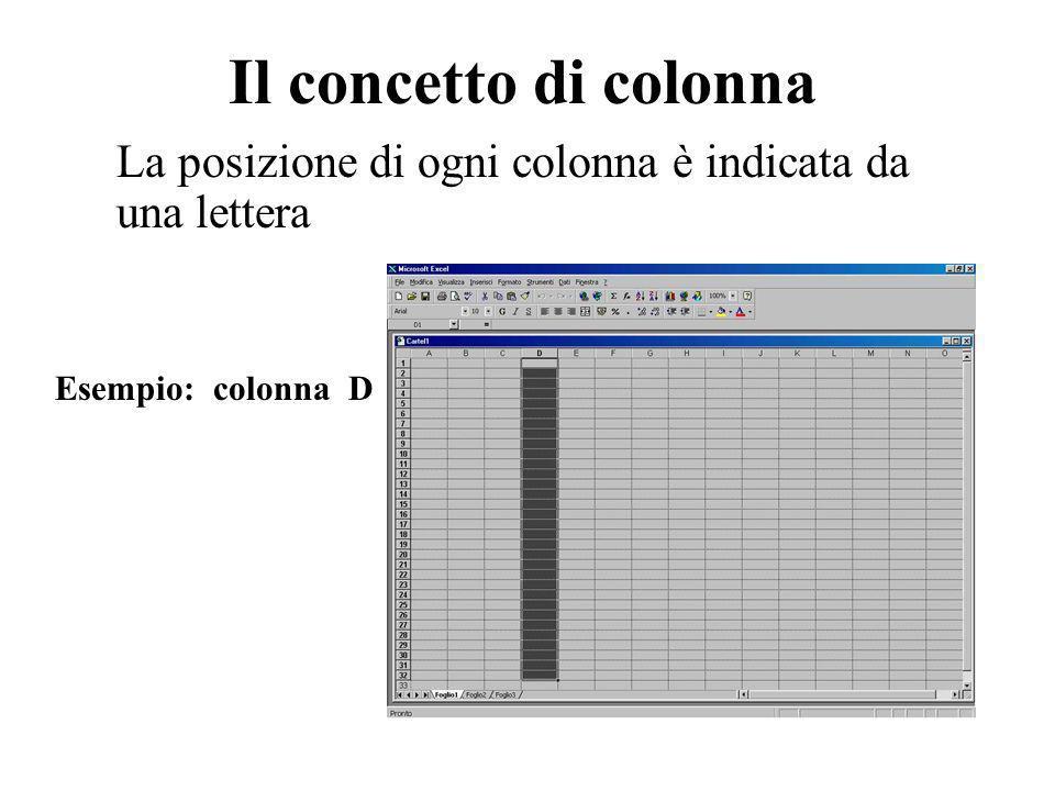 Il concetto di colonna La posizione di ogni colonna è indicata da una lettera Esempio: colonna D