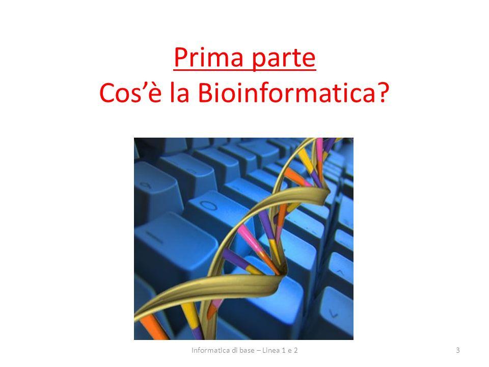 Una definizione di Bioinformatica La Bioinformatica è la scienza che si occupa della soluzione di problemi biologici, sfruttando gli strumenti e le teorie dellInformatica Nata con lo scopo di fornire metodi automatici per lanalisi di sequenze di DNA e di proteine: – sviluppo di database di dati biologici – enorme impulso dal Progetto Genoma Umano (sequenziamento di genomi su larga scala) 4Informatica di base – Linea 1 e 2