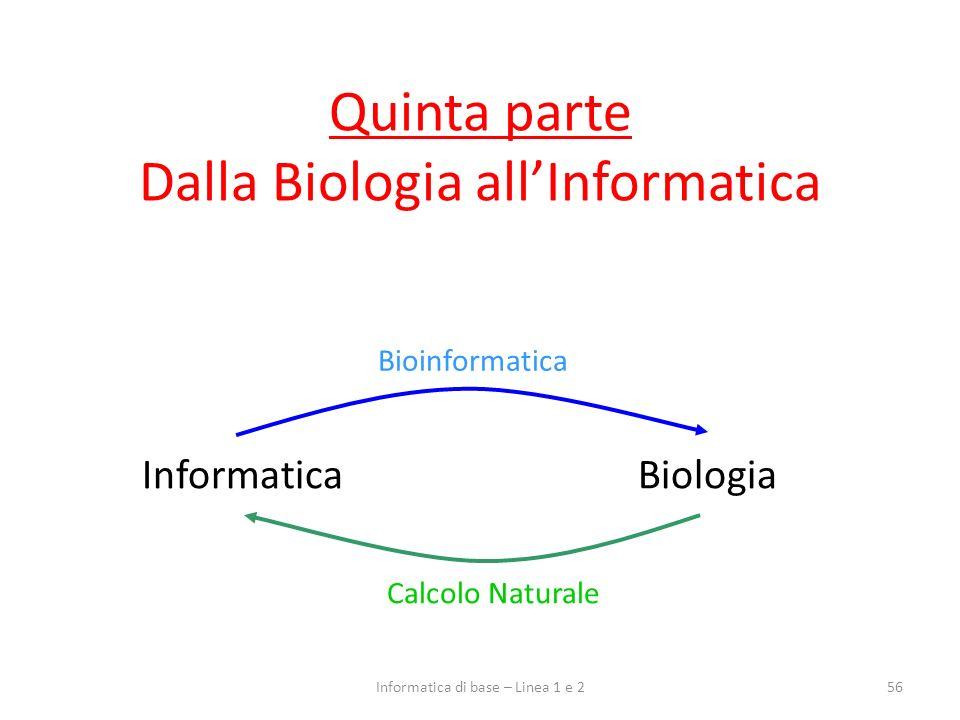 Quinta parte Dalla Biologia allInformatica 56Informatica di base – Linea 1 e 2 InformaticaBiologia Calcolo Naturale Bioinformatica