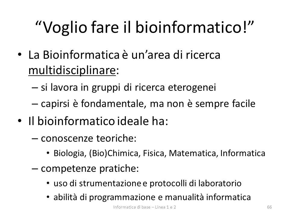 Voglio fare il bioinformatico! La Bioinformatica è unarea di ricerca multidisciplinare: – si lavora in gruppi di ricerca eterogenei – capirsi è fondam