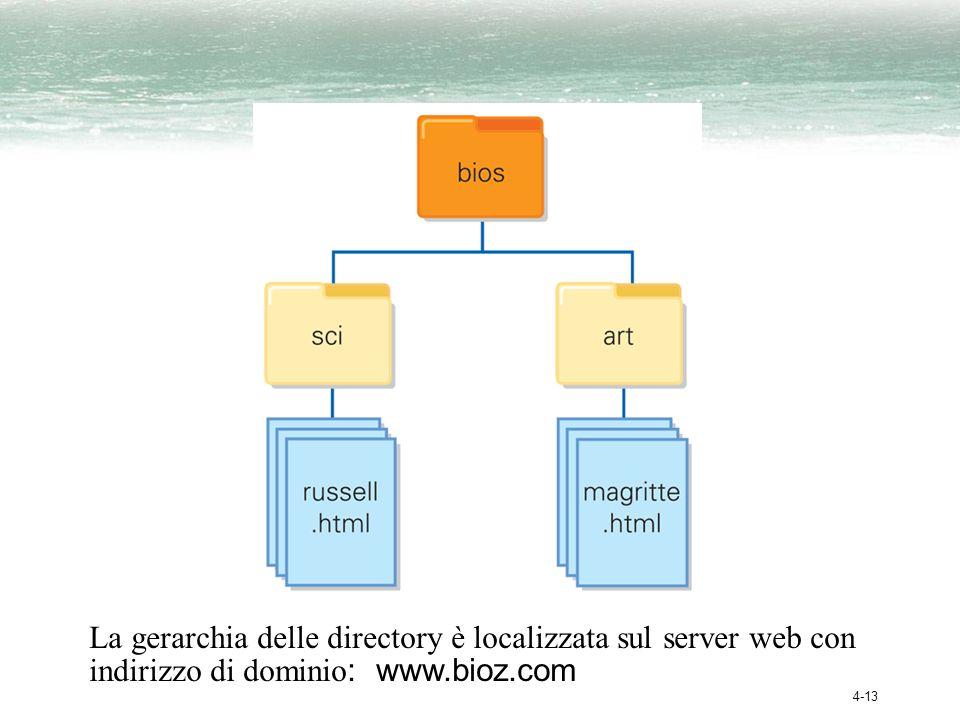 4-13 La gerarchia delle directory è localizzata sul server web con indirizzo di dominio : www.bioz.com