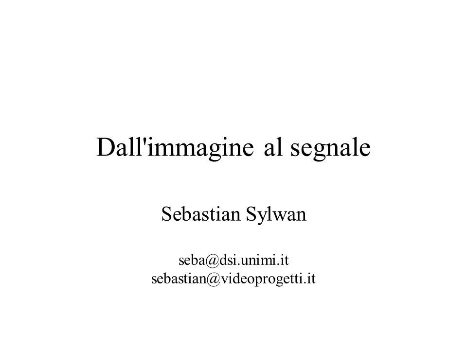 Dall'immagine al segnale Sebastian Sylwan seba@dsi.unimi.it sebastian@videoprogetti.it