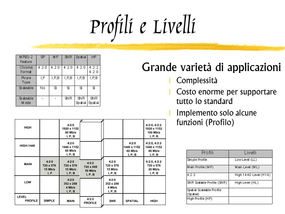 Profili e Livelli Grande varietà di applicazioni Complessità Costo enorme per supportare tutto lo standard Implemento solo alcune funzioni (Profilo)