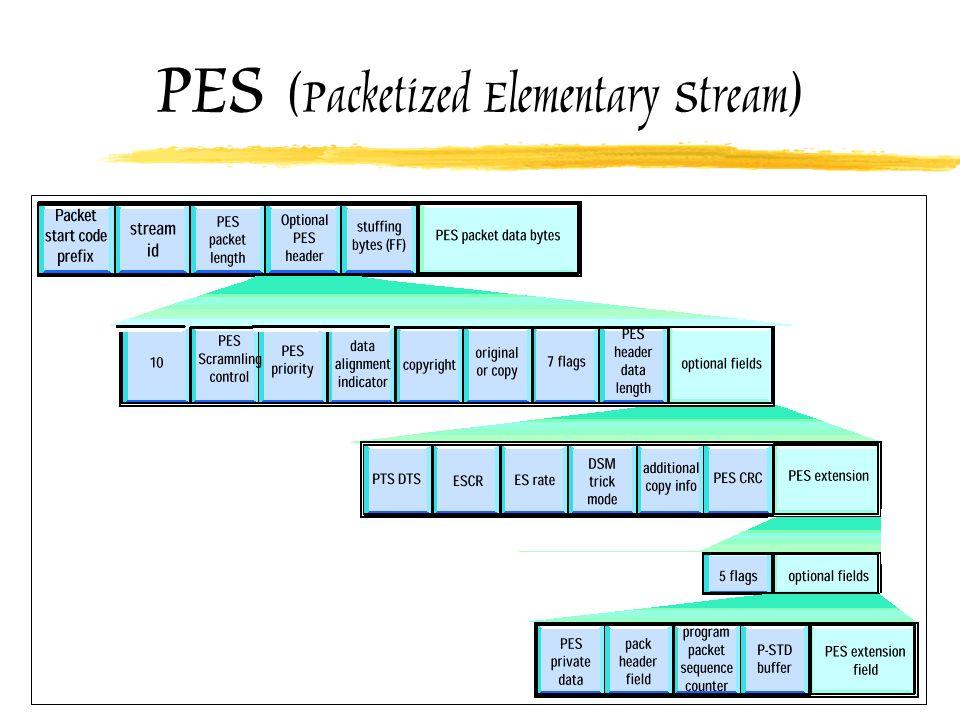 PES (Packetized Elementary Stream)