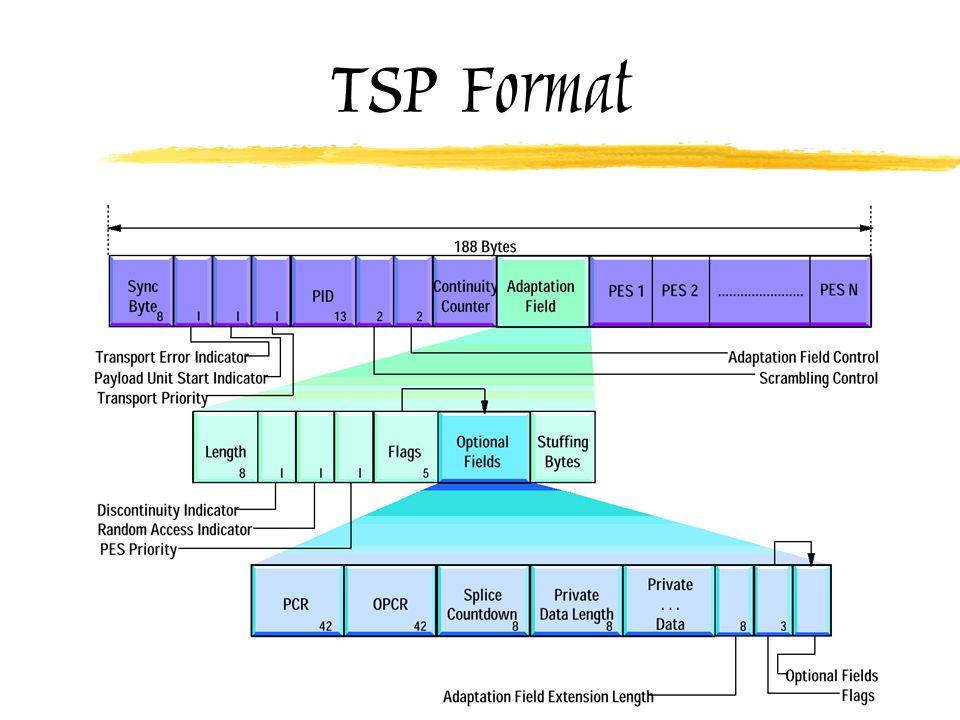 TSP Format