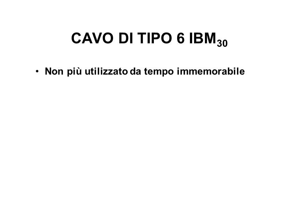 CAVO DI TIPO 6 IBM 30 Non più utilizzato da tempo immemorabile