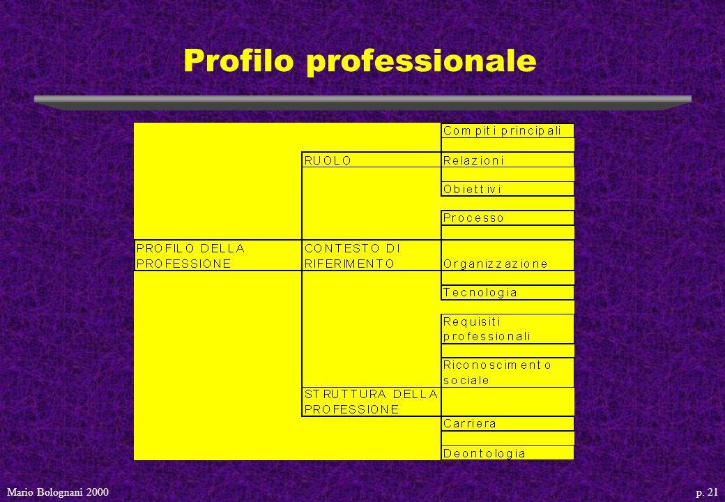 p. 21Mario Bolognani 2000 Profilo professionale