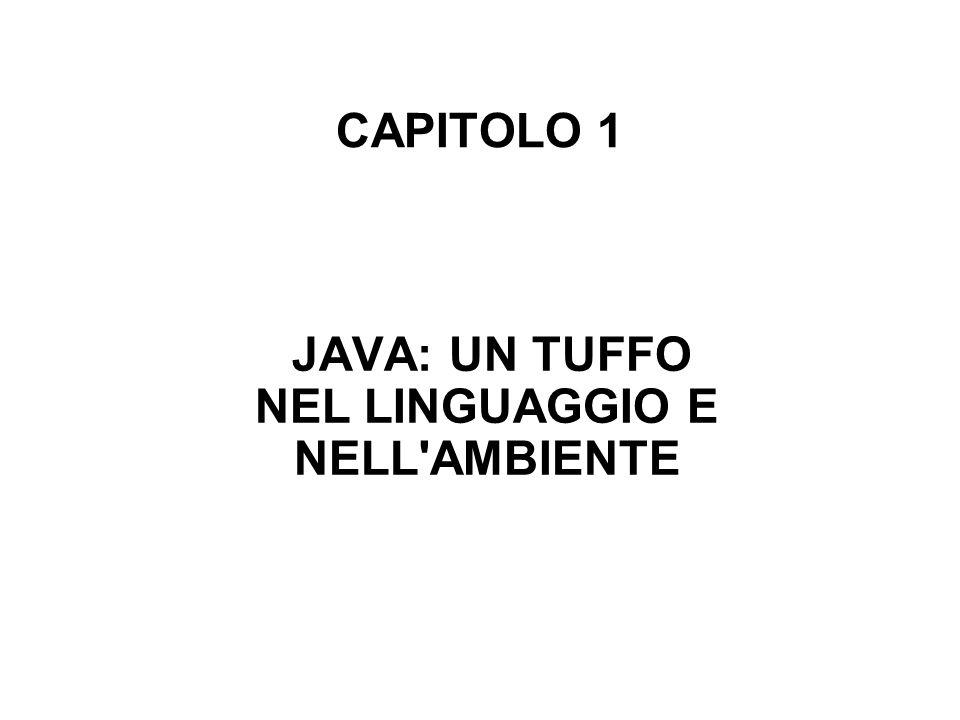 CAPITOLO 1 JAVA: UN TUFFO NEL LINGUAGGIO E NELL AMBIENTE