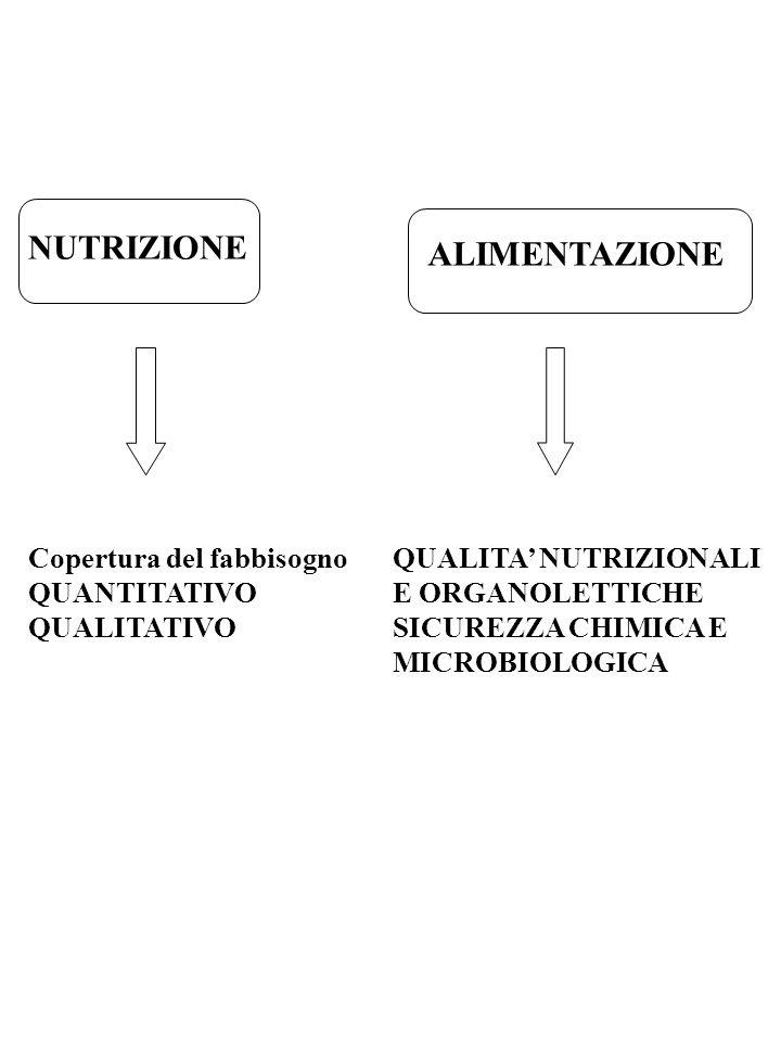 NUTRIZIONE ALIMENTAZIONE Copertura del fabbisogno QUANTITATIVO QUALITATIVO QUALITA NUTRIZIONALI E ORGANOLETTICHE SICUREZZA CHIMICA E MICROBIOLOGICA