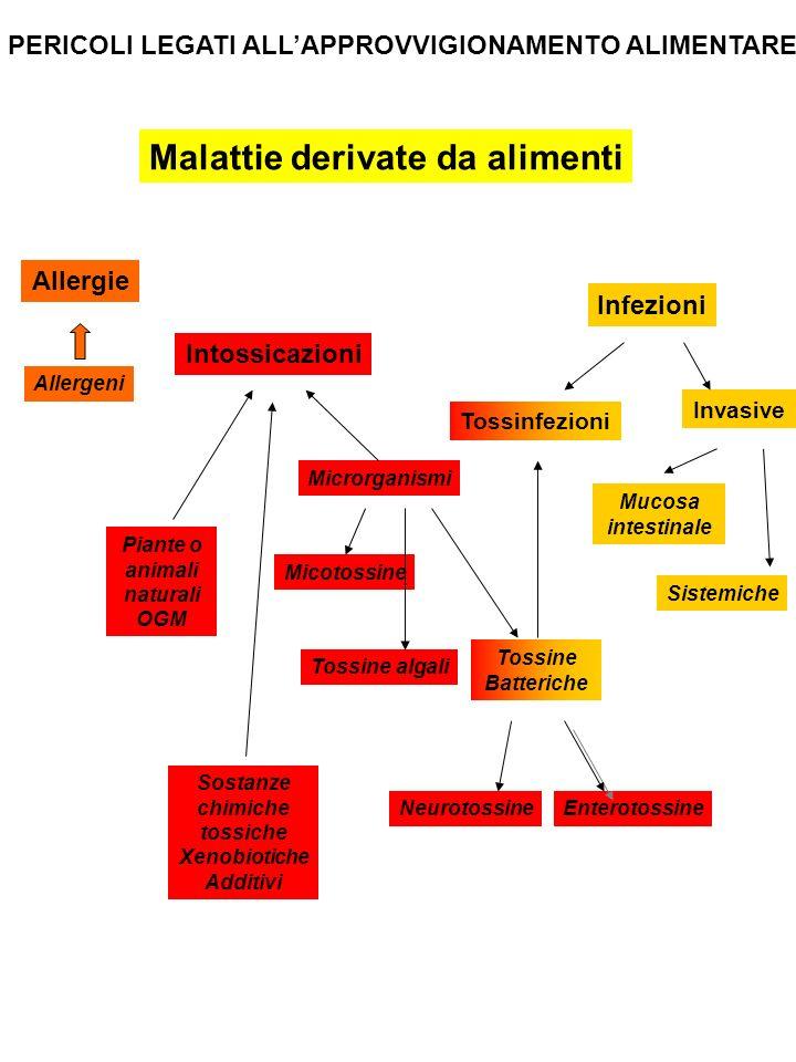 PERICOLI LEGATI ALLAPPROVVIGIONAMENTO ALIMENTARE Malattie derivate da alimenti Allergie Allergeni Intossicazioni Infezioni Piante o animali naturali O