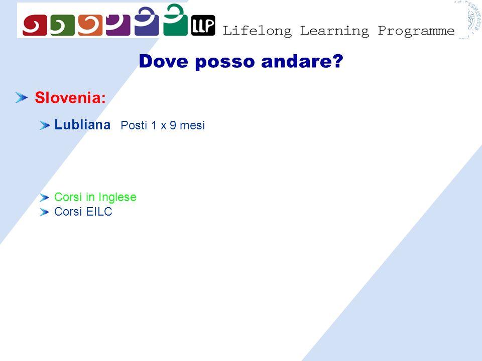 Dove posso andare? Slovenia: Lubliana Posti 1 x 9 mesi Corsi in Inglese Corsi EILC