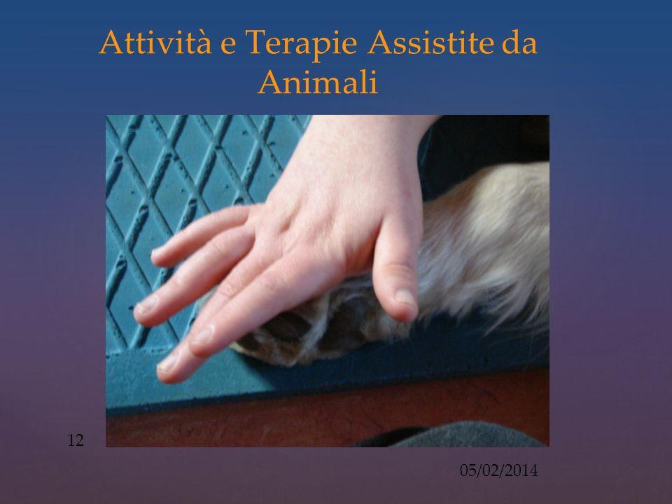 Attività e Terapie Assistite da Animali 05/02/2014 12