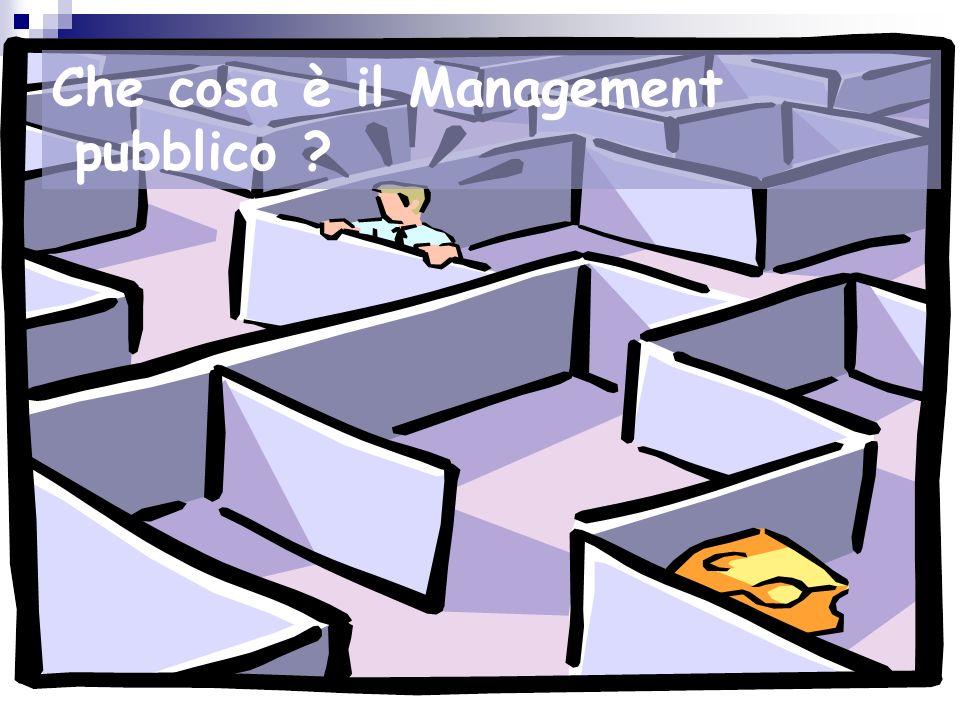 Cosè il Management? Gestione Organizzazione Rilevazione esterna interna