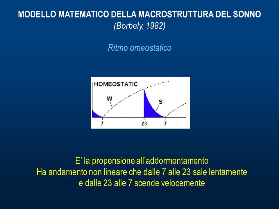 MODELLO MATEMATICO DELLA MACROSTRUTTURA DEL SONNO (Borbely, 1982) Ritmo omeostatico E la propensione alladdormentamento Ha andamento non lineare che dalle 7 alle 23 sale lentamente e dalle 23 alle 7 scende velocemente