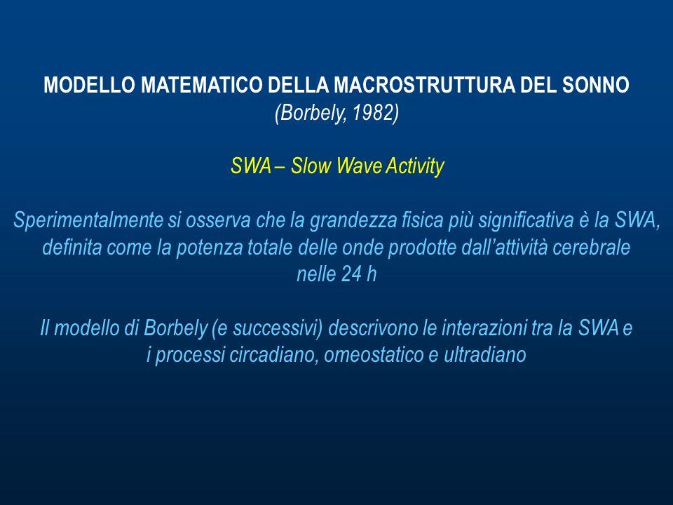 MODELLO MATEMATICO DELLA MACROSTRUTTURA DEL SONNO (Borbely, 1982) SWA – Slow Wave Activity Sperimentalmente si osserva che la grandezza fisica più significativa è la SWA, definita come la potenza totale delle onde prodotte dallattività cerebrale nelle 24 h Il modello di Borbely (e successivi) descrivono le interazioni tra la SWA e i processi circadiano, omeostatico e ultradiano